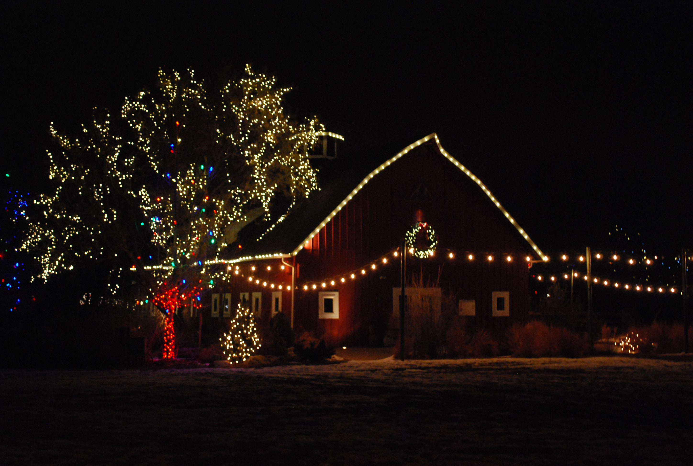 denver botanic gardens at chatfield lovelivingincolorado - Best Christmas Lights Denver